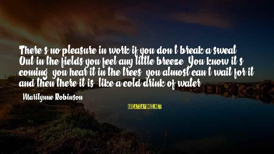 No Sweat Sayings By Marilynne Robinson: There's no pleasure in work if you don't break a sweat. Out in the fields
