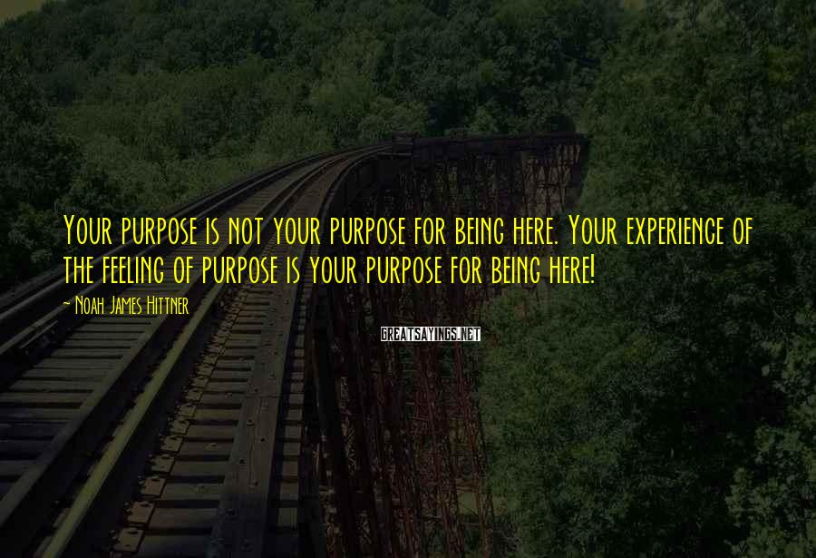 Noah James Hittner Sayings: Your purpose is not your purpose for being here. Your experience of the feeling of