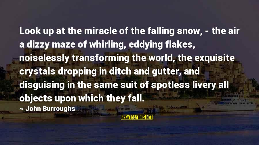 Noiselessly Sayings By John Burroughs: Look up at the miracle of the falling snow, - the air a dizzy maze