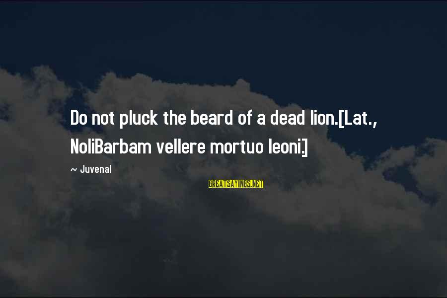 Noli Sayings By Juvenal: Do not pluck the beard of a dead lion.[Lat., NoliBarbam vellere mortuo leoni.]