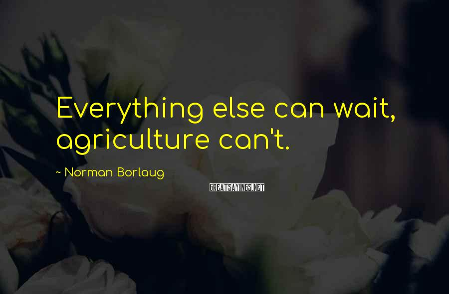 Norman Borlaug Sayings: Everything else can wait, agriculture can't.