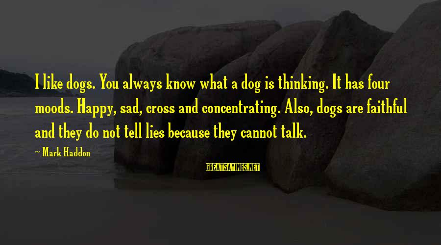 Not Concentrating Sayings By Mark Haddon: I like dogs. You always know what a dog is thinking. It has four moods.
