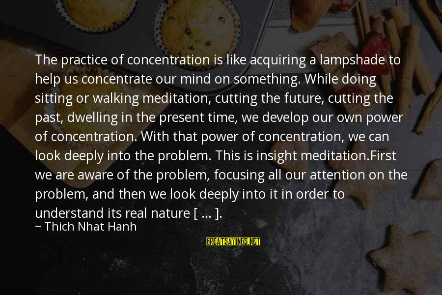 Not Dwelling On The Past Sayings By Thich Nhat Hanh: The practice of concentration is like acquiring a lampshade to help us concentrate our mind