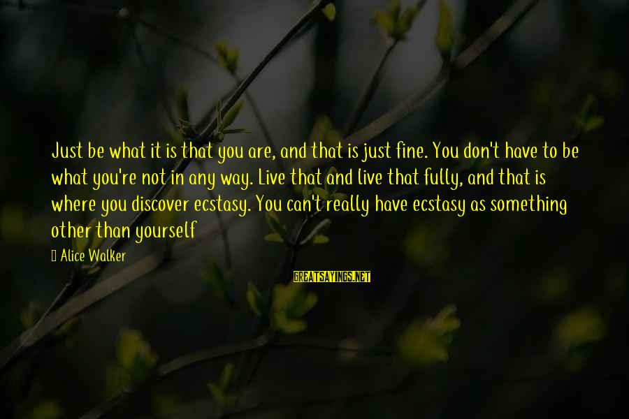 Not What You Have Sayings By Alice Walker: Just be what it is that you are, and that is just fine. You don't