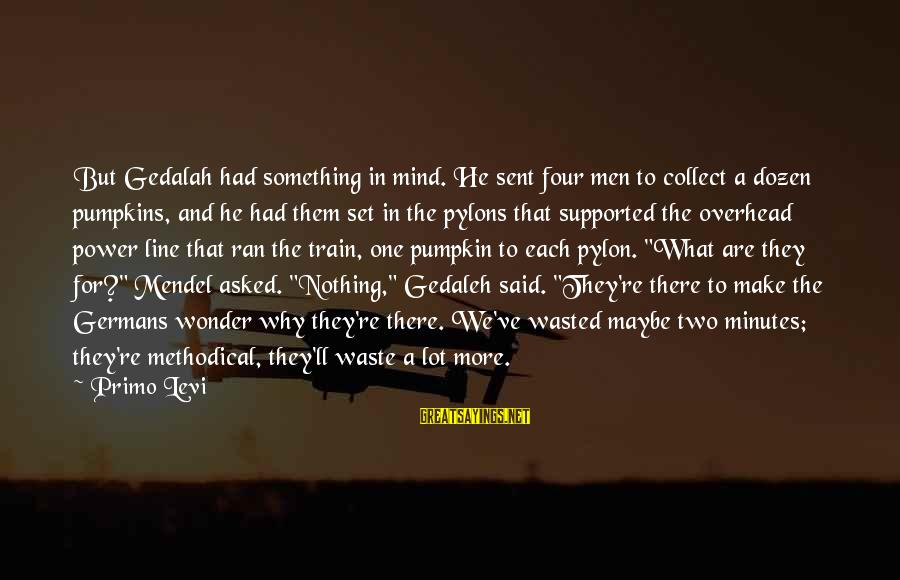 Nothing Is Ever Wasted Sayings By Primo Levi: But Gedalah had something in mind. He sent four men to collect a dozen pumpkins,