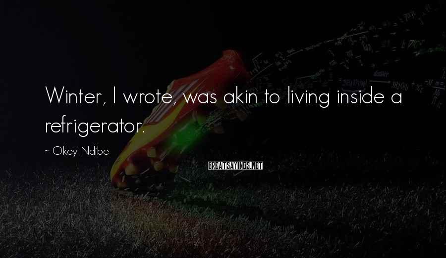 Okey Ndibe Sayings: Winter, I wrote, was akin to living inside a refrigerator.