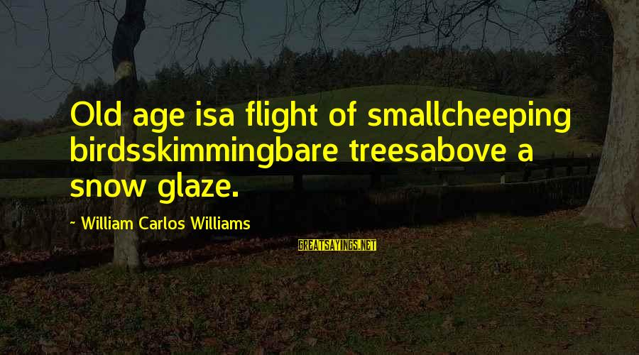 Old Age Sayings By William Carlos Williams: Old age isa flight of smallcheeping birdsskimmingbare treesabove a snow glaze.