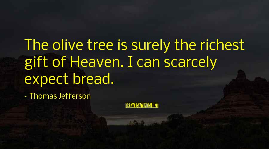 Olives Tree Sayings By Thomas Jefferson: The olive tree is surely the richest gift of Heaven. I can scarcely expect bread.