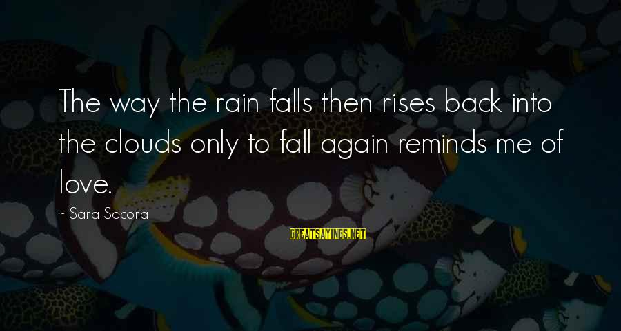 On And Off Again Relationships Sayings By Sara Secora: The way the rain falls then rises back into the clouds only to fall again