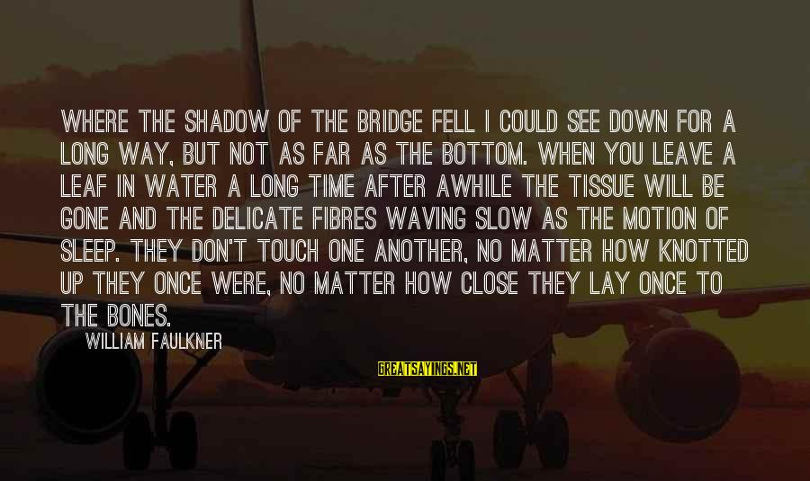 Once I Leave Sayings By William Faulkner: Where the shadow of the bridge fell I could see down for a long way,