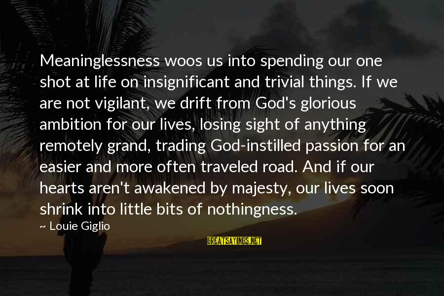One Shot Life Sayings By Louie Giglio: Meaninglessness woos us into spending our one shot at life on insignificant and trivial things.