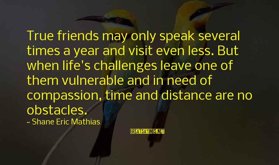 One Year Friendship Sayings By Shane Eric Mathias: True friends may only speak several times a year and visit even less. But when