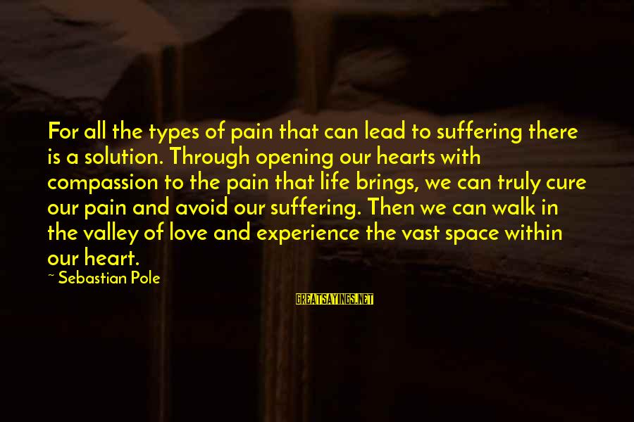 Opening Your Heart To Love Sayings By Sebastian Pole: For all the types of pain that can lead to suffering there is a solution.