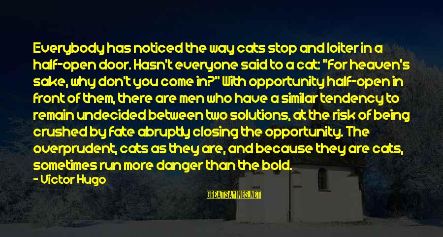 Opportunity And Risk Sayings By Victor Hugo: Everybody has noticed the way cats stop and loiter in a half-open door. Hasn't everyone