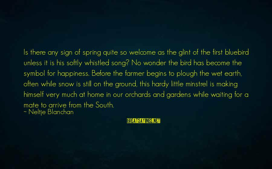 Our First Home Sayings By Neltje Blanchan: Is there any sign of spring quite so welcome as the glint of the first