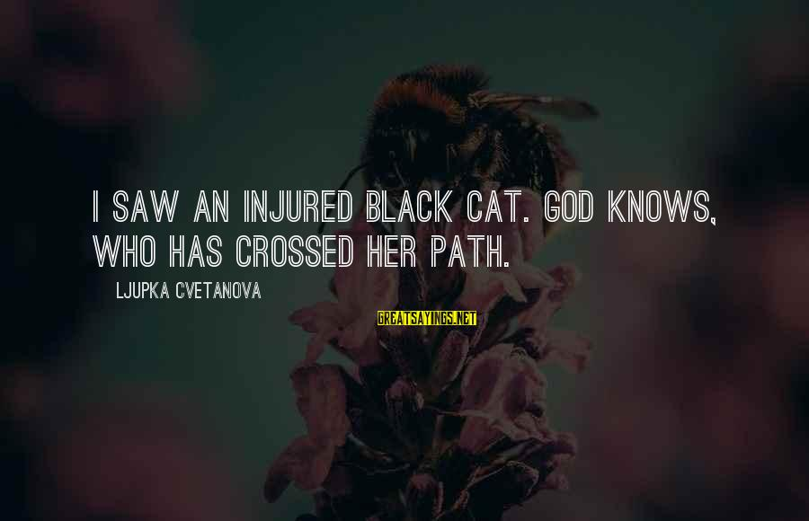 Our Paths Crossed Sayings By Ljupka Cvetanova: I saw an injured black cat. God knows, who has crossed her path.