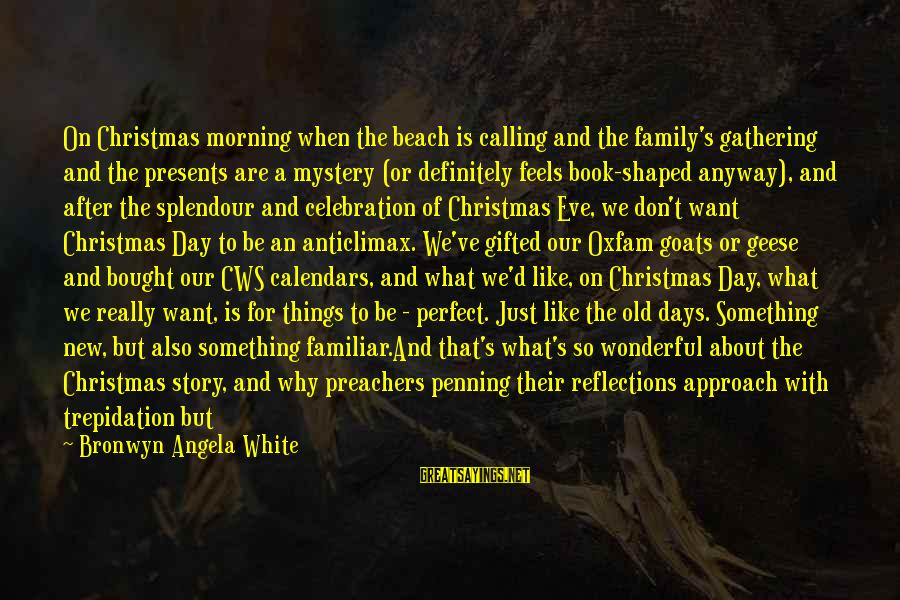 Our Perfect Family Sayings By Bronwyn Angela White: On Christmas morning when the beach is calling and the family's gathering and the presents