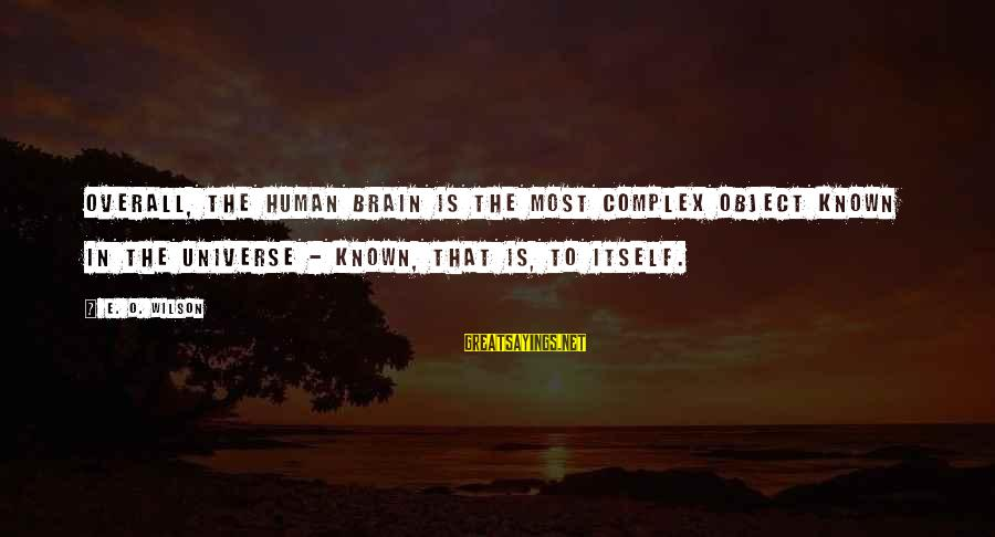 Overall Sayings By E. O. Wilson: Overall, the human brain is the most complex object known in the universe - known,