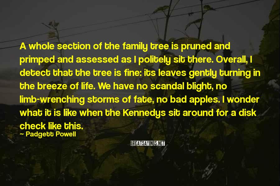 Padgett Powell Sayings: A whole section of the family tree is pruned and primped and assessed as I