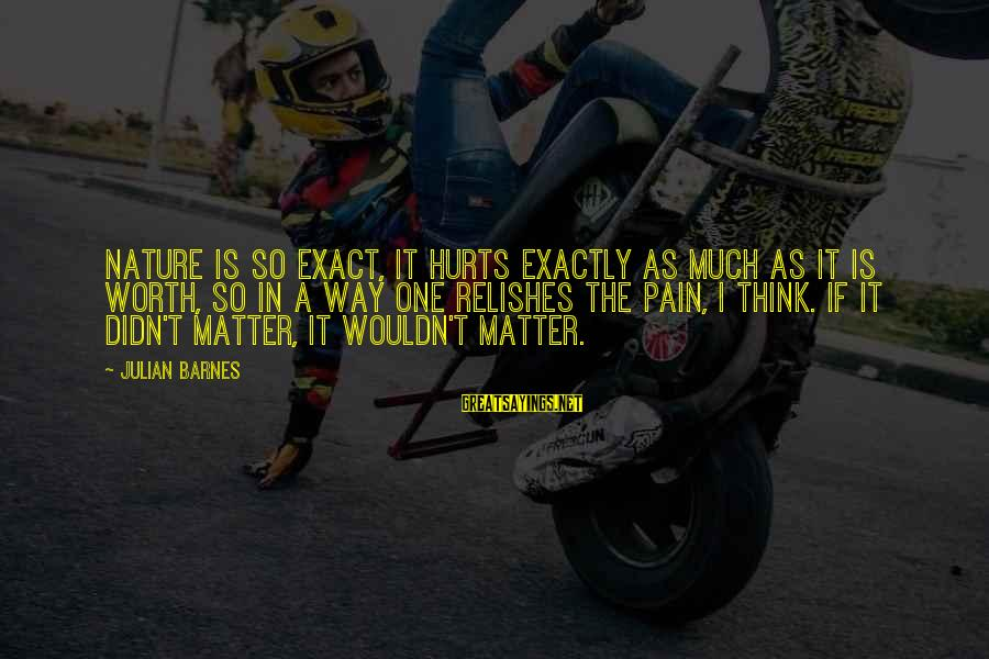 Pain Is Worth It Sayings By Julian Barnes: Nature is so exact, it hurts exactly as much as it is worth, so in