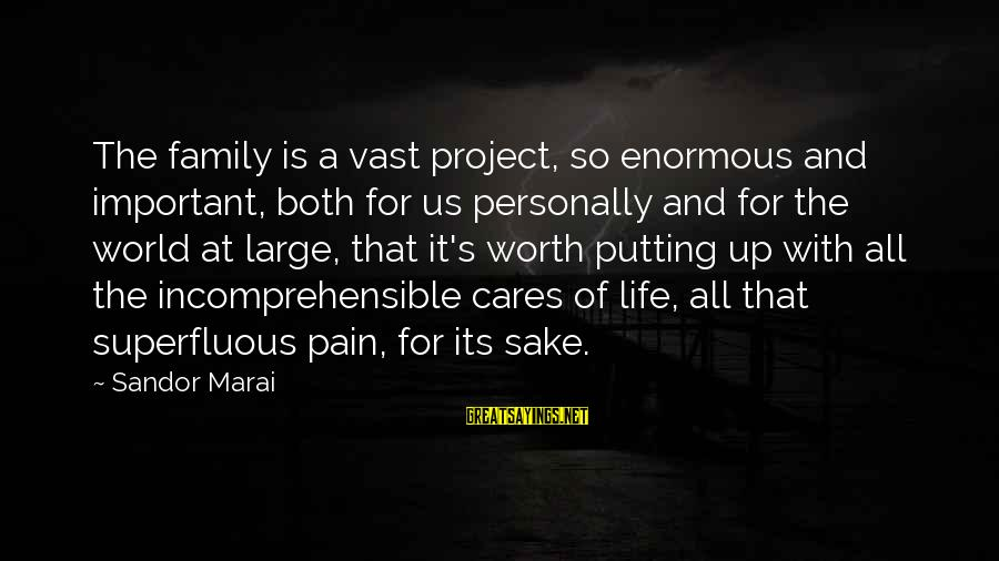 Pain Is Worth It Sayings By Sandor Marai: The family is a vast project, so enormous and important, both for us personally and