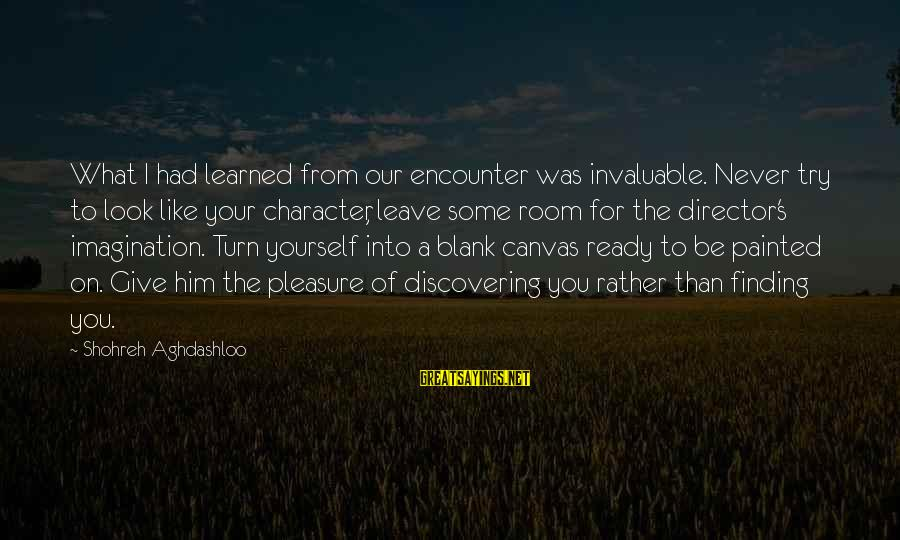 Painted Canvas Sayings By Shohreh Aghdashloo: What I had learned from our encounter was invaluable. Never try to look like your