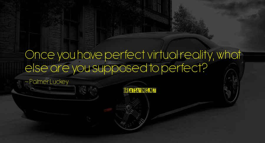 Palmer Sayings By Palmer Luckey: Once you have perfect virtual reality, what else are you supposed to perfect?