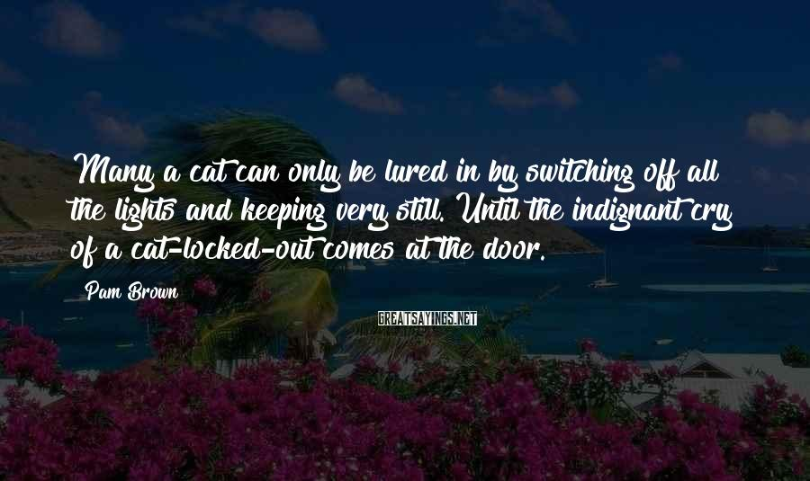 Pam Brown Sayings: Many a cat can only be lured in by switching off all the lights and