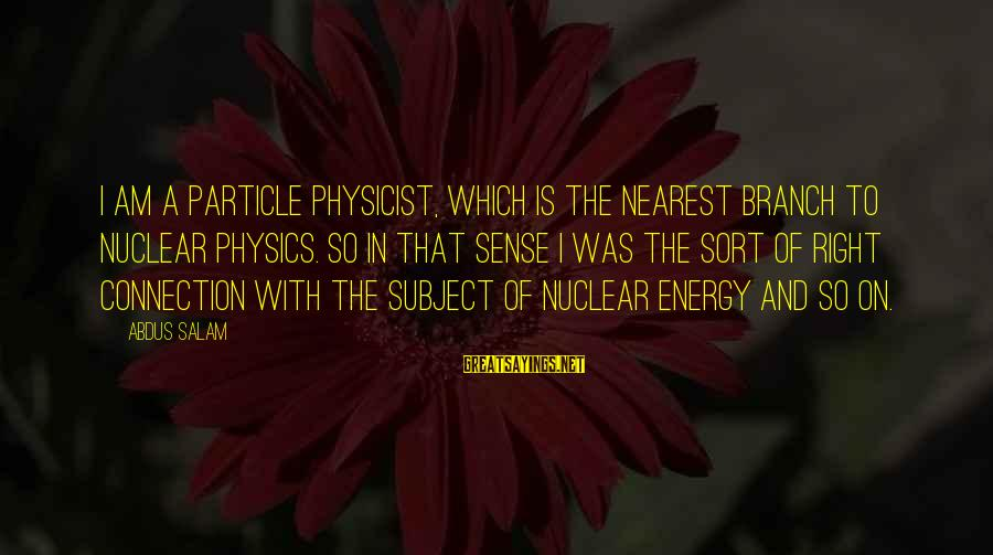 Particle Physics Sayings By Abdus Salam: I am a particle physicist, which is the nearest branch to nuclear physics. So in