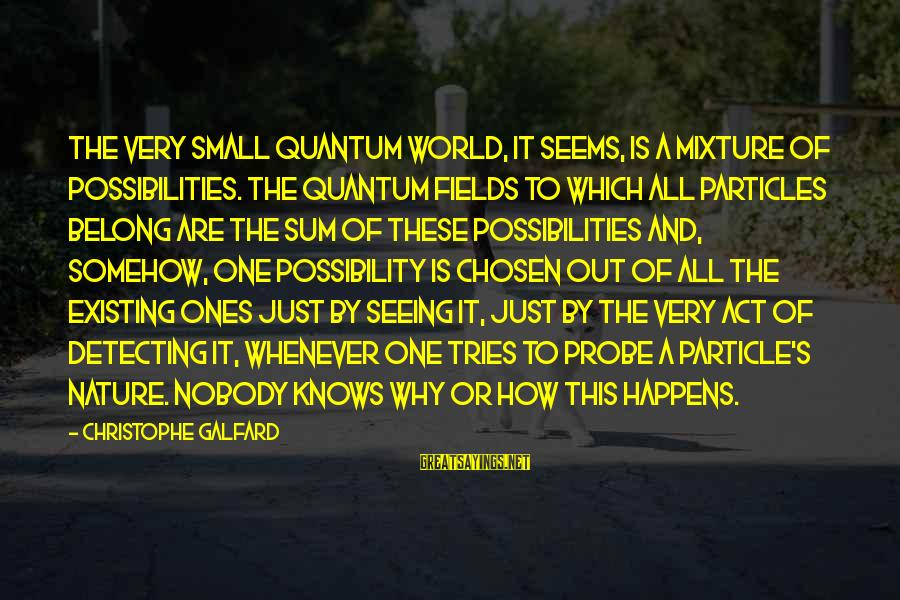 Particle Physics Sayings By Christophe Galfard: The very small quantum world, it seems, is a mixture of possibilities. The quantum fields