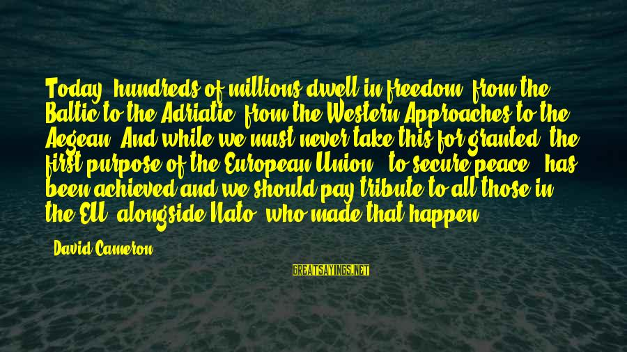Pay Tribute Sayings By David Cameron: Today, hundreds of millions dwell in freedom, from the Baltic to the Adriatic, from the