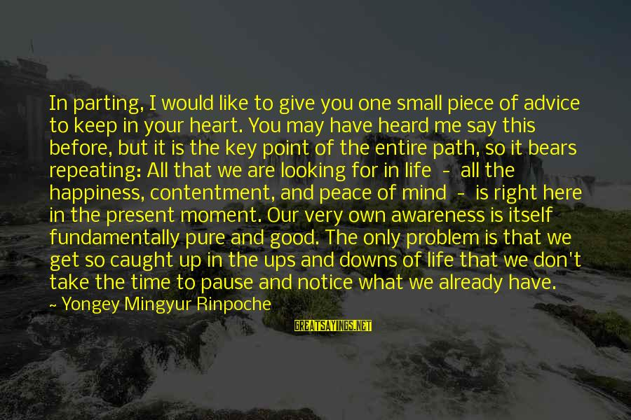 Peace In Our Time Sayings By Yongey Mingyur Rinpoche: In parting, I would like to give you one small piece of advice to keep