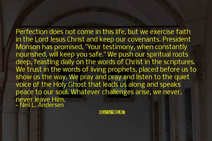 Peace In Your Soul Sayings By Neil L. Andersen: Perfection does not come in this life, but we exercise faith in the Lord Jesus