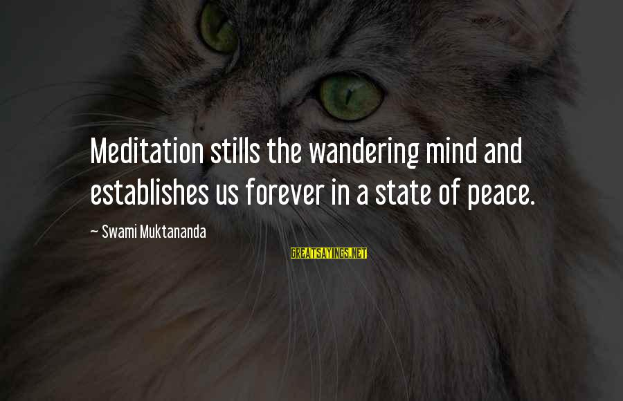 Peanuts Comic Sayings By Swami Muktananda: Meditation stills the wandering mind and establishes us forever in a state of peace.