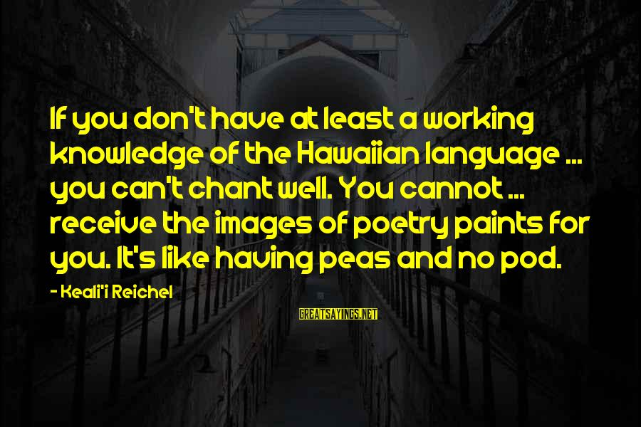 Peas In A Pod Sayings By Keali'i Reichel: If you don't have at least a working knowledge of the Hawaiian language ... you
