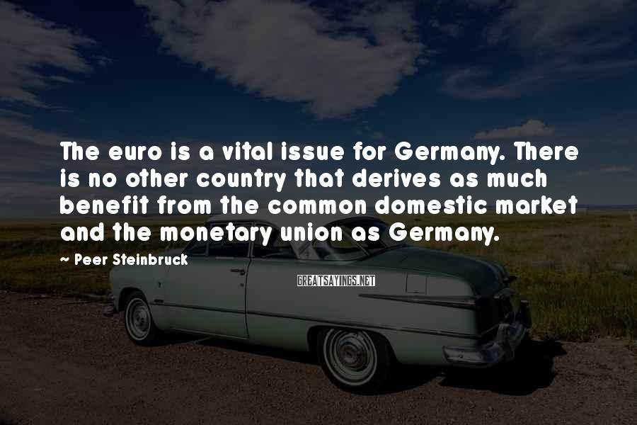 Peer Steinbruck Sayings: The euro is a vital issue for Germany. There is no other country that derives