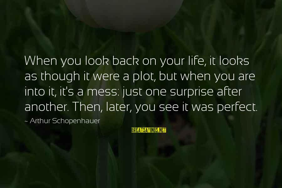 Perfect As You Are Sayings By Arthur Schopenhauer: When you look back on your life, it looks as though it were a plot,