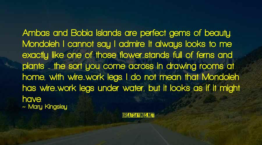 Perfect As You Are Sayings By Mary Kingsley: Ambas and Bobia Islands are perfect gems of beauty. Mondoleh I cannot say I admire.