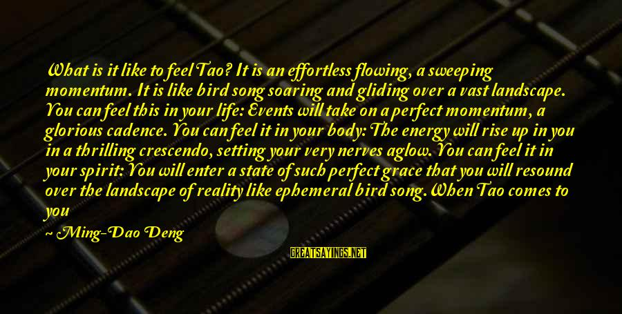 Perfect As You Are Sayings By Ming-Dao Deng: What is it like to feel Tao? It is an effortless flowing, a sweeping momentum.