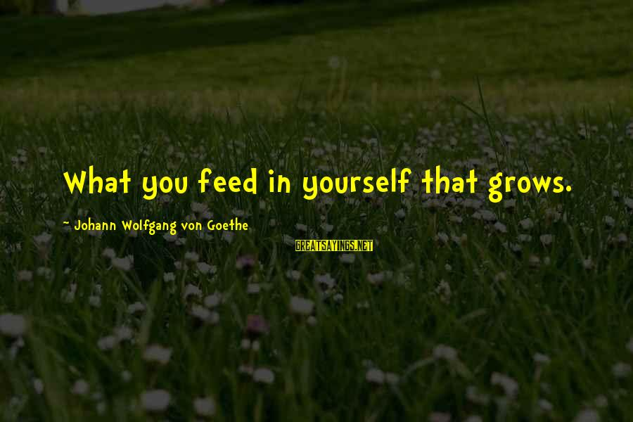 Personality Psychology Sayings By Johann Wolfgang Von Goethe: What you feed in yourself that grows.