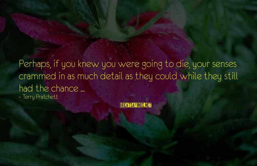 Pettumus Sayings By Terry Pratchett: Perhaps, if you knew you were going to die, your senses crammed in as much