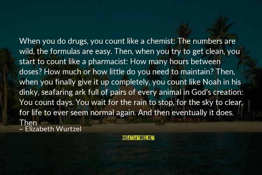 Pharmacist Day Sayings By Elizabeth Wurtzel: When you do drugs, you count like a chemist: The numbers are wild, the formulas
