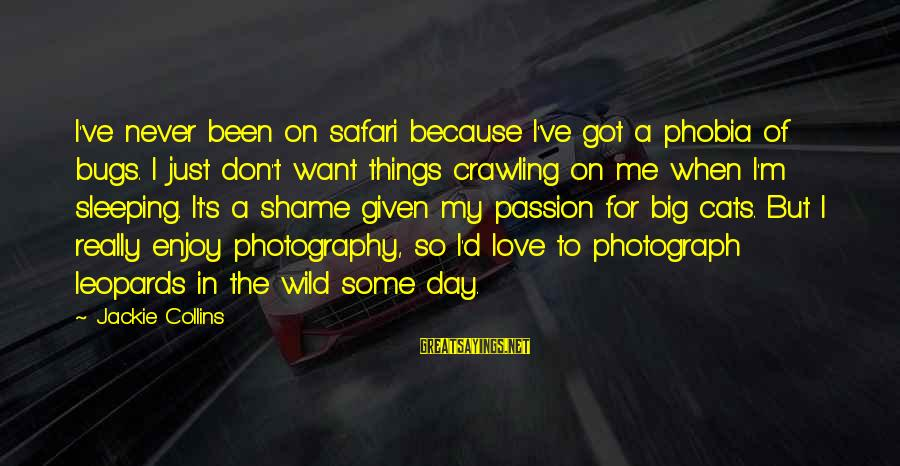 Photography Passion Sayings By Jackie Collins: I've never been on safari because I've got a phobia of bugs. I just don't
