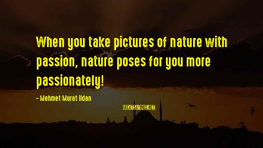 Photography Passion Sayings By Mehmet Murat Ildan: When you take pictures of nature with passion, nature poses for you more passionately!