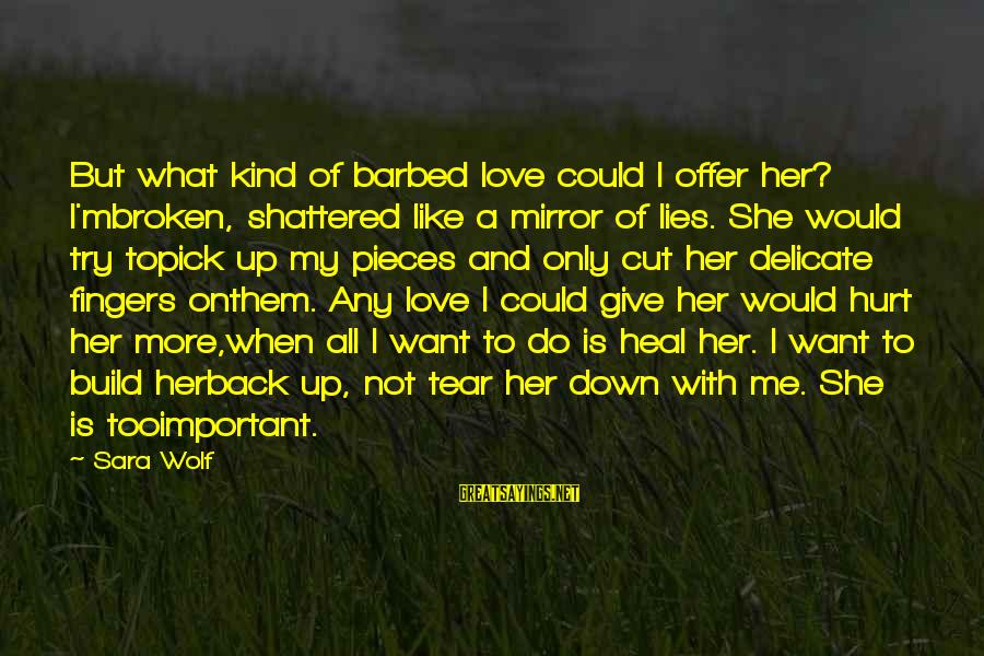 Pick Me Up Love Sayings By Sara Wolf: But what kind of barbed love could I offer her? I'mbroken, shattered like a mirror
