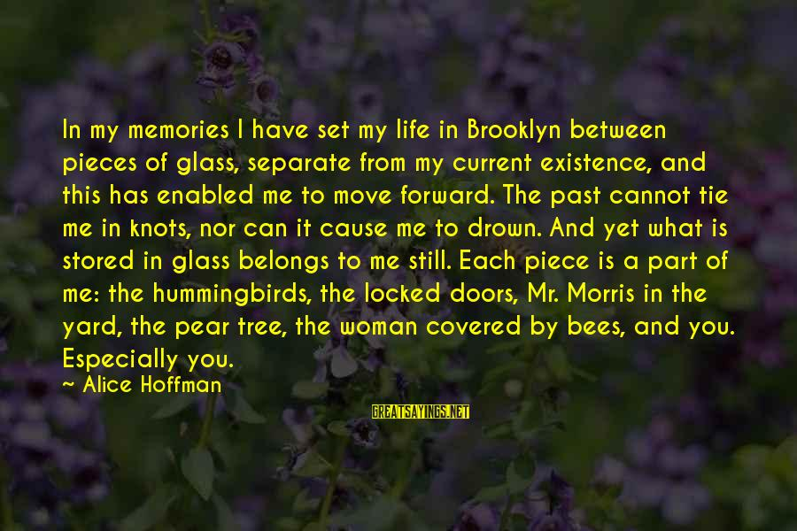 Pieces Of My Life Sayings By Alice Hoffman: In my memories I have set my life in Brooklyn between pieces of glass, separate