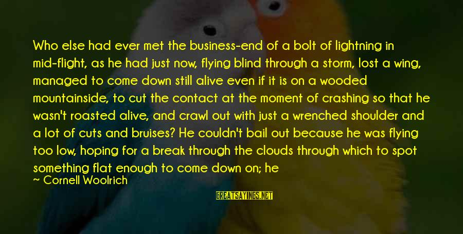 Plane Crash Sayings By Cornell Woolrich: Who else had ever met the business-end of a bolt of lightning in mid-flight, as