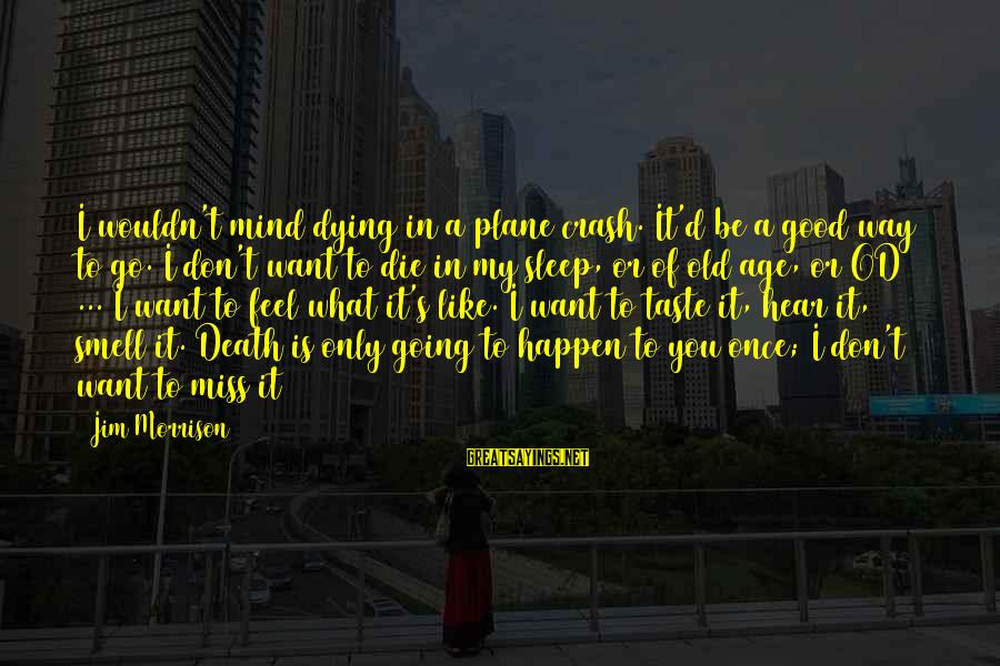 Plane Crash Sayings By Jim Morrison: I wouldn't mind dying in a plane crash. It'd be a good way to go.