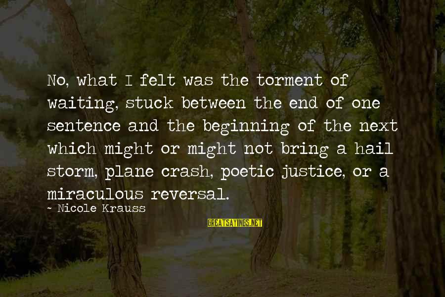 Plane Crash Sayings By Nicole Krauss: No, what I felt was the torment of waiting, stuck between the end of one
