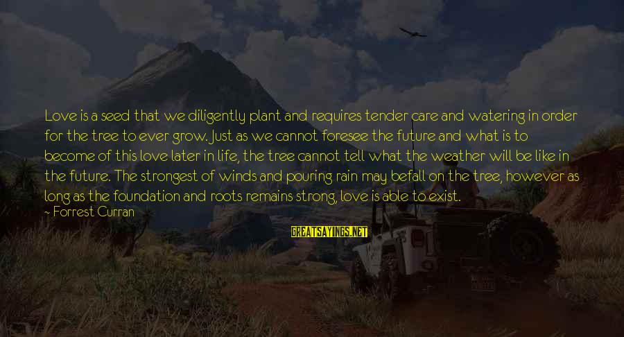 Plant A Tree Love Sayings By Forrest Curran: Love is a seed that we diligently plant and requires tender care and watering in
